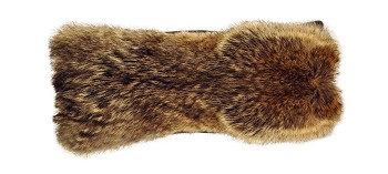 P-0476  Small coyote fur front